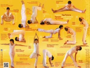Prenatal-yoga---basic-postures